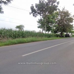 Brondong-FotoLokasi-p2