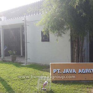 PT Java Agritech